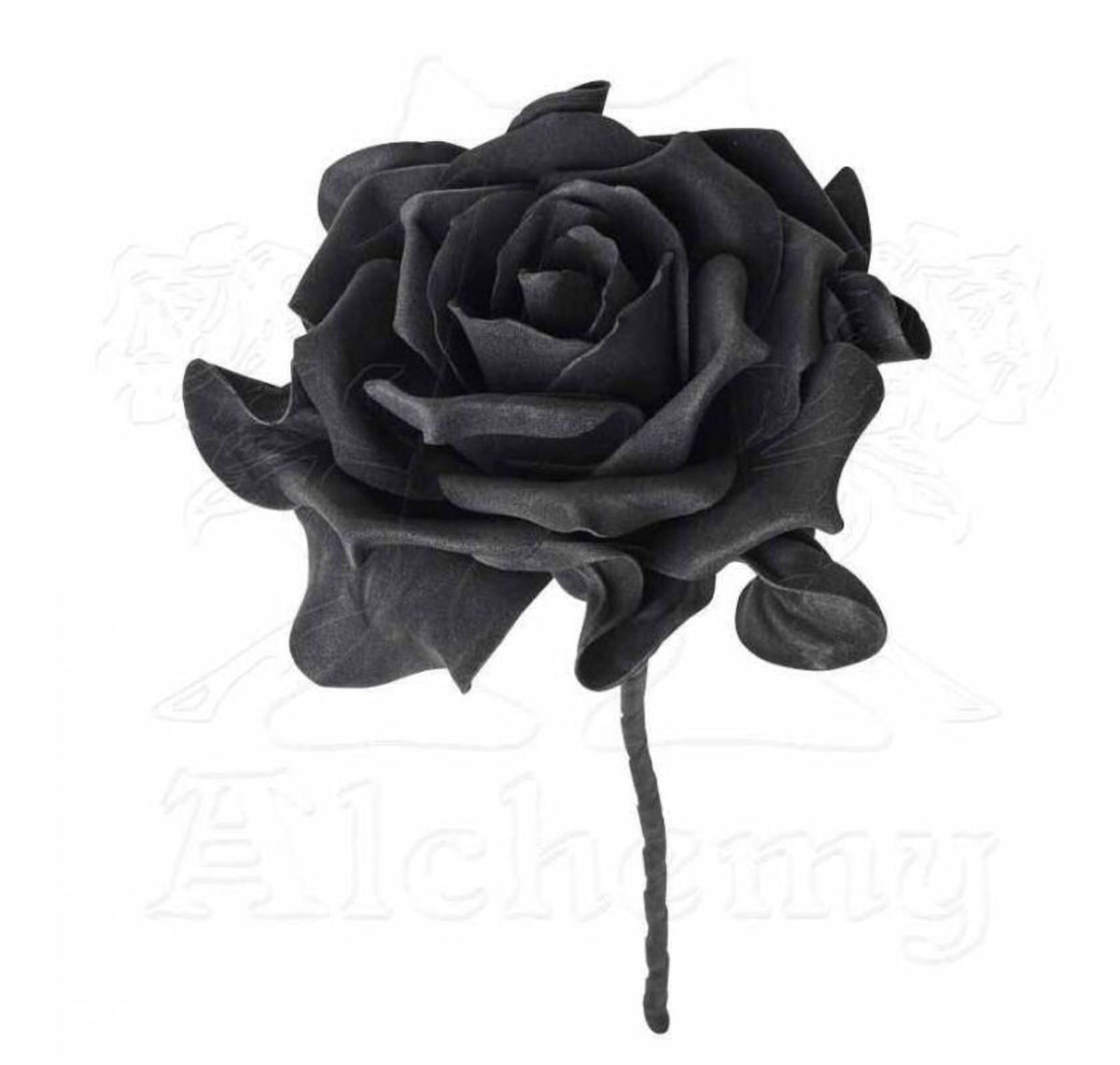 Shine Hollywood Style Headband with Black Rose