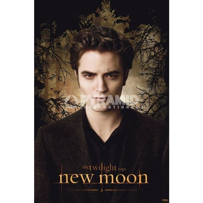 poster Twilight - New Moon (Edward Trees) - PYRAMID POSTERS