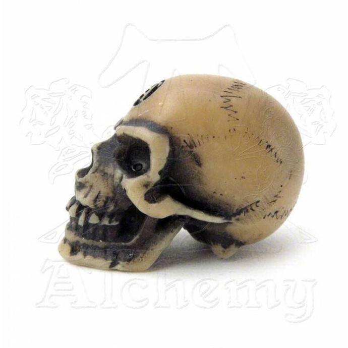 decoration Alchemy Gothic - Lapillus Worry Skull