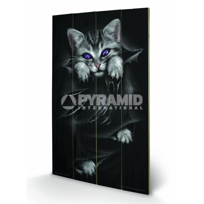 wooden image Spiral (Bright Eyes) - Pyramid Posters