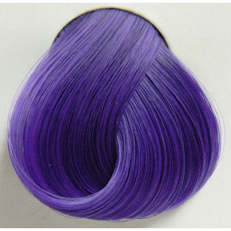 color to hair DIRECTIONS - Violet