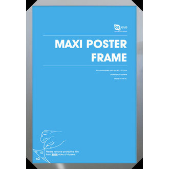 frame to poster (61x91,5 cm) - Silver - GB Posters - FMMXA1SL