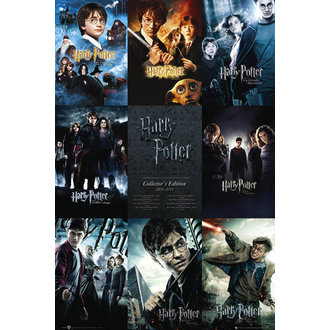 poster Harry Potter - Collection - GB Posters - FP2698