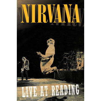 poster Nirvana - Reading - LP1662