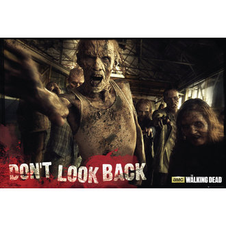 poster The Walking Dead - Zombies - GB Posters, GB posters