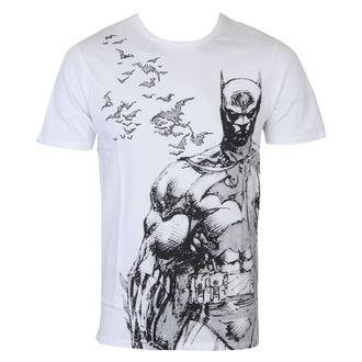 film t-shirt men's Batman - Bat Fly - LEGEND - HBATS1246