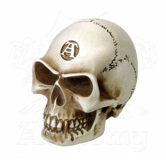 decoration (gear lever knob) ALCHEMY GOTHIC - Alchemist Gear Knob: Bone - V40