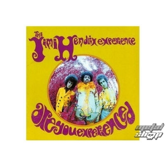 figurine (3D image) JIMI HENDRIX are you experienced plaque Figure