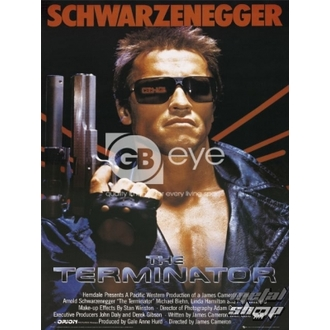 poster - The Terminator - FP1677 - GB posters