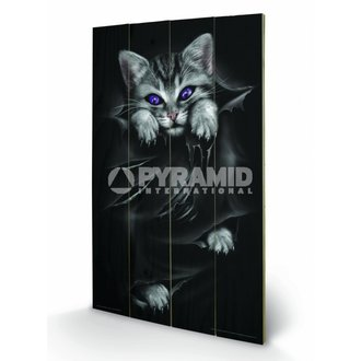 wooden image Spiral (Bright Eyes) - Pyramid Posters - LW10312P
