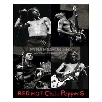 Poster - Red Hot Chili Peppers - PP0740 - Pyramid Posters