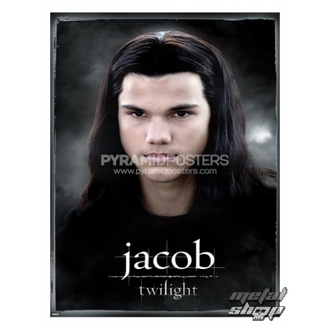 poster - Twilight (Jacob) - PP31688 - Pyramid Posters