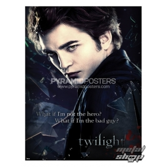 poster - Twilight (Broken Glass) - PP31859 - Pyramid Posters