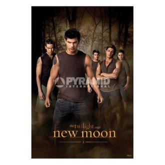 poster Twilight - New Moon (Wolf Pack) (Twilight) - PP32065 - PYRAMID POSTERS